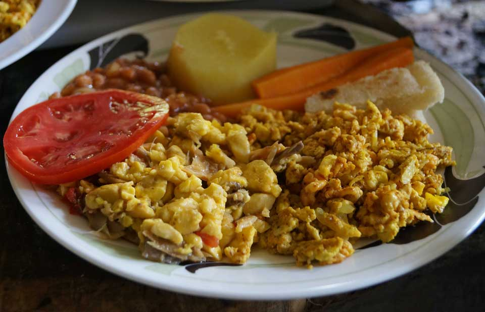 Ackee and saltfish eco resort reports on jamaica 39 s for Salt fish ackee