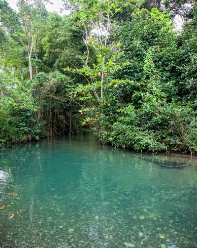 Eco Resort River Jamaica