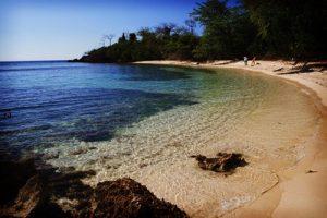 little bay beach eco tour