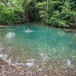 eco lodge jamaica river