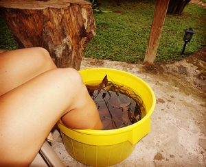 Epsom Salt Foot Bath Eco Resort Jamaica