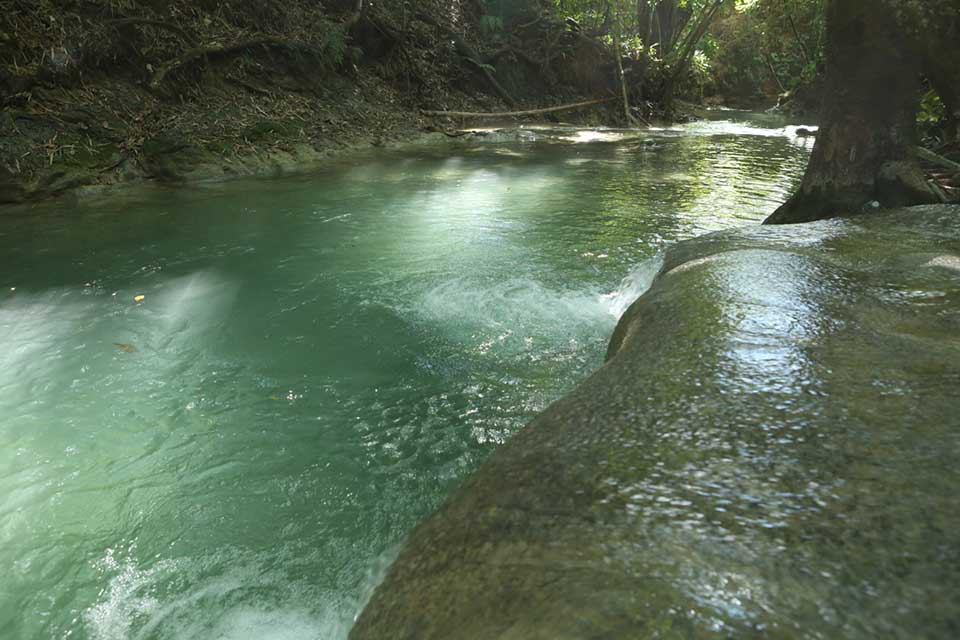 Mayfield Falls: Top Jamaica Waterfalls Eco Tour